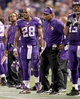 Oct 27, 2013; Minneapolis, MN, USA; Minnesota Vikings running back Adrian Peterson (28) talks with head coach Leslie Frazier on the sidelines during the fourth quarter against the Green Bay Packers at Mall of America Field at H.H.H. Metrodome. The Packers defeated the Vikings 44-31. Mandatory Credit: Brace Hemmelgarn-USA TODAY Sports