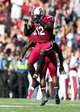 Nov 2, 2013; Columbia, SC, USA; South Carolina Gamecocks safety Brison Williams (12) celebrates with cornerback Victor Hampton (27) after a fumble recovery in the fourth quarter against the Mississippi State Bulldogs at Williams-Brice Stadium. The Gamecocks defeated the Bulldogs 34-16.  Mandatory Credit: Jeremy Brevard-USA TODAY Sports