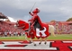 Nov 2, 2013; Piscataway, NJ, USA;  Rutgers Scarlet Knight performs after the game against the Temple Owls at High Points Solutions Stadium. Rutgers won 23-20. Mandatory Credit: Jim O'Connor-USA TODAY Sports