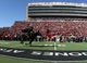 Nov 9, 2013; Lubbock, TX, USA; The Texas Tech Red Raiders mascot enters the field before the game with the Kansas State Wildcats at Jones AT&T Stadium. Mandatory Credit: Michael C. Johnson-USA TODAY Sports