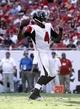 Nov 17, 2013; Tampa, FL, USA; Atlanta Falcons quarterback Dominique Davis (4) throws the ball against the Tampa Bay Buccaneers during the second half at Raymond James Stadium. Tampa Bay Buccaneers defeated the Atlanta Falcons 41-28. Mandatory Credit: Kim Klement-USA TODAY Sports