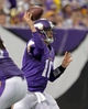 Dec 1, 2013; Minneapolis, MN, USA; Minnesota Vikings quarterback Matt Cassel (16) throws during the fourth quarter against the Chicago Bears at Mall of America Field at H.H.H. Metrodome. The Vikings defeated the Bears 23-20 in overtime. Mandatory Credit: Brace Hemmelgarn-USA TODAY Sports