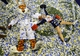 Dec 7, 2013; Atlanta, GA, USA; The Auburn Tigers mascot and cheerleader Lauren Lynch play in confetti after defeating the Missouri Tigers in the 2013 SEC Championship game at Georgia Dome. Auburn won 59-42. Mandatory Credit: John David Mercer-USA TODAY Sports
