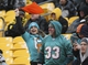 Dec 8, 2013; Pittsburgh, PA, USA; Miami Dolphins fans cheer during the second half of the game against the Pittsburgh Steelers at Heinz Field. The Dolphins won the game, 34-27. Mandatory Credit: Jason Bridge-USA TODAY Sports