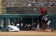 Mar 26, 2014; Phoenix, AZ, USA; Cincinnati Reds center fielder Roger Bernadina (15) steals second base in front of Chicago White Sox second baseman Leury Garcia (28) in the fourth inning at Camelback Ranch. Mandatory Credit: Rick Scuteri-USA TODAY Sports