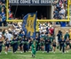 Apr 12, 2014; Notre Dame, IN, USA; The Notre Dame Leprechaun leads the Notre Dame Fighting Irish onto the field before the Blue-Gold Game at Notre Dame Stadium. Mandatory Credit: Matt Cashore-USA TODAY Sports