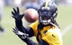 Jun 17, 2014; Pittsburgh, PA, USA; Pittsburgh Steelers linebacker Sean Spence (51) participates in drills during minicamp at the UPMC Sports Performance Complex. Mandatory Credit: Charles LeClaire-USA TODAY Sports