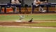 Jun 18, 2014; St. Petersburg, FL, USA; Pigeons land on the field during the sixth inning  between the Baltimore Orioles and Tampa Bay Rays at Tropicana Field. Mandatory Credit: Kim Klement-USA TODAY Sports