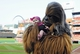 Jul 9, 2014; St. Louis, MO, USA; Chewbacca poses for a photo with a young fan before a game between the St. Louis Cardinals and the Pittsburgh Pirates on Star Wars night at Busch Stadium. Cardinals defeated the Pirates 5-2. Mandatory Credit: Jeff Curry-USA TODAY Sports