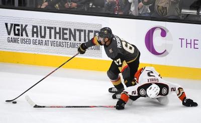 Anaheim Ducks vs. Vegas Golden Knights - 2/23/20 NHL Pick, Odds, and Prediction