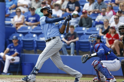 Tampa Bay Rays vs. Toronto Blue Jays - 7/24/20 MLB Pick, Odds, and Prediction