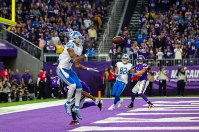 NFC North: Minnesota Vikings vs Detroit Lions 11/8/20 NFL Picks, Odds, Predictions