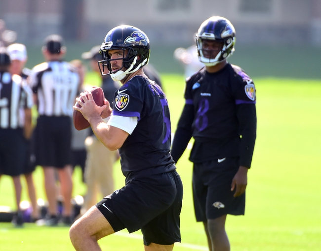 NFL Odds: Baltimore Ravens 2018 NFL Betting Preview