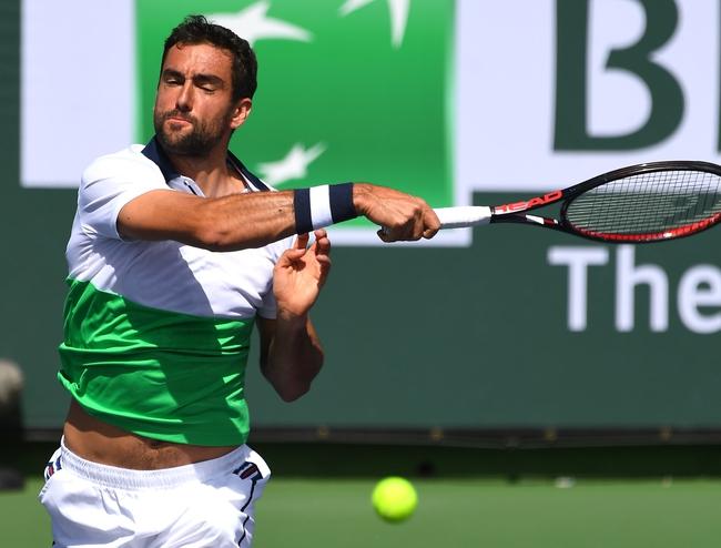 Marin Cilic vs. Marius Copil - 7/30/19 Citi Open Tennis Pick, Odds, and Prediction