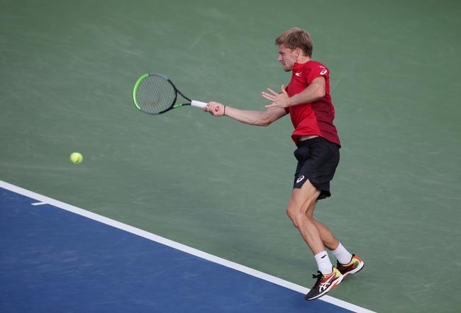 Jannik Sinner vs. David Goffin - 2/13/2020 Rotterdam Open Tennis Pick, Odds, and Prediction