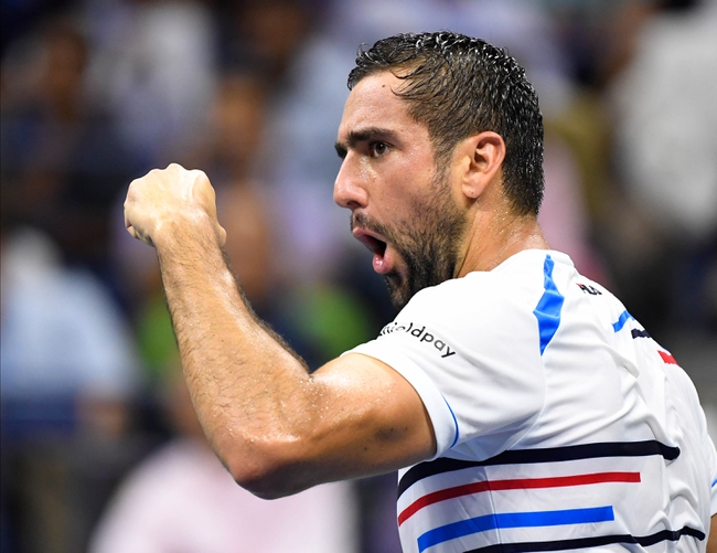Marin Cilic vs. Benoit Paire - 2/25/20 Dubai Open Tennis Pick, Odds, and Predictions