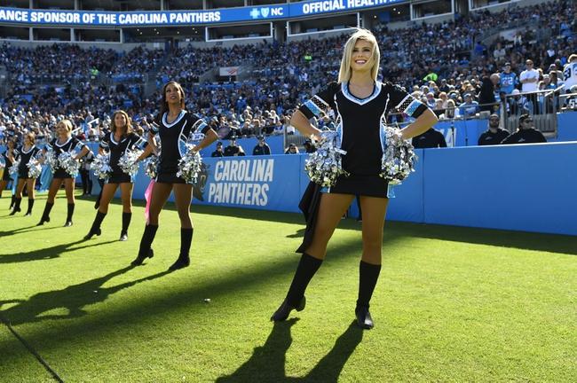Atlanta Falcons at Carolina Panthers - 11/17/19 NFL Pick, Odds, and Prediction