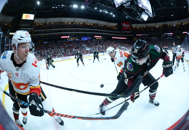 Arizona Coyotes vs. Calgary Flames - 12/10/19 NHL Pick, Odds, and Prediction