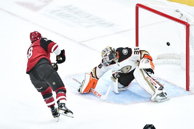 Arizona Coyotes vs. Anaheim Ducks - 1/2/20 NHL Pick, Odds, and Prediction