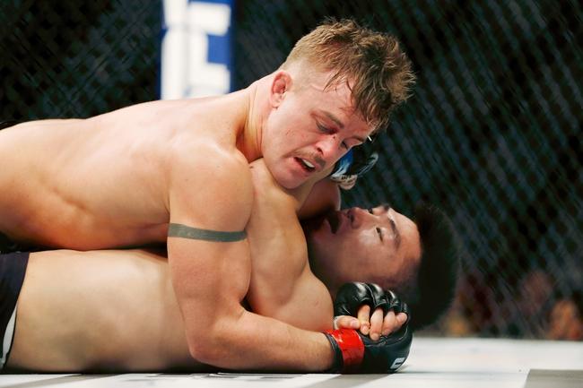 Cody Stamann vs. Brian Kelleher  - 6/6/20 UFC 250 Pick and Prediction