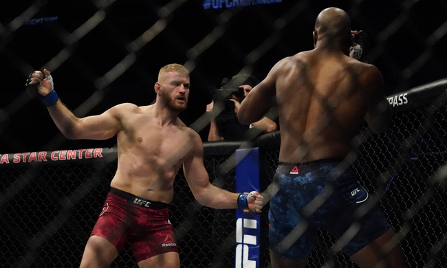 UFC 253: Jan Blachowicz vs. Dominick Reyes - Pick, Odds, and Prediction