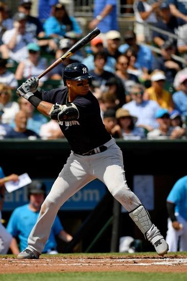 Dana Lane's Miami Marlins vs New York Yankees 'Oddsmaker Mistake'