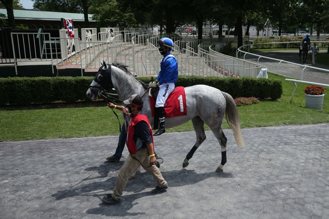 Belmont Park - 10/23/20 Horse Racing Picks, Odds, and Predictions