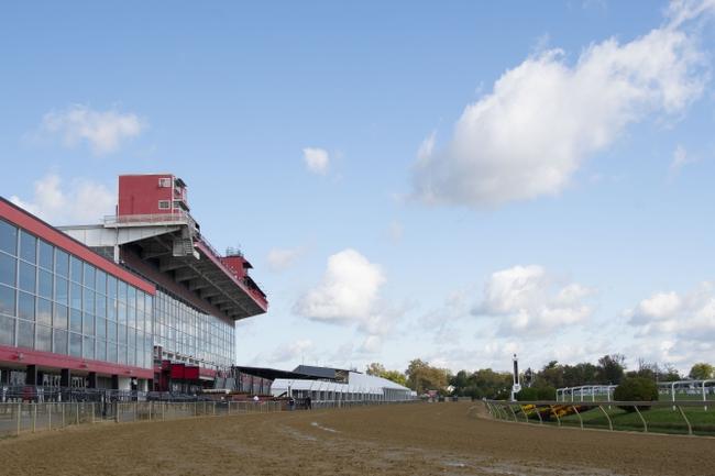 Remington Park- 11-23-20  Horse Racing Picks, Odds, and Predictions