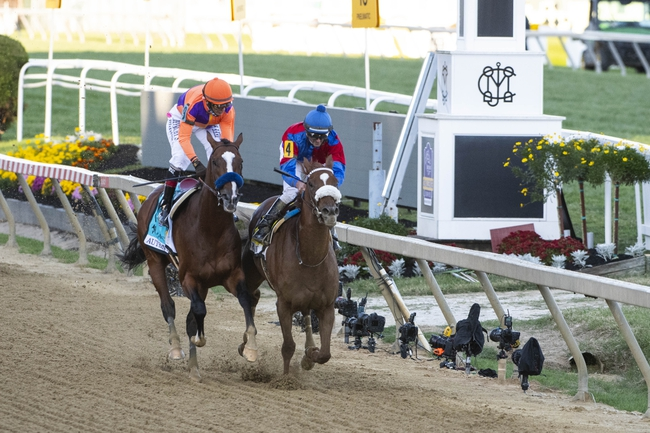 Gulfstream Park West- 10/28/20 Horse Racing Picks, Odds, and Predictions