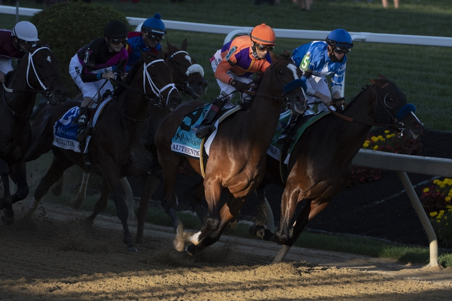 Belmont Park - 10/30/20 Horse Racing Picks, Odds, and Predictions