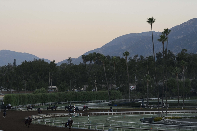 2014 Breeder's Cup Sprint Pick, Odds, Post Positions, and Preview
