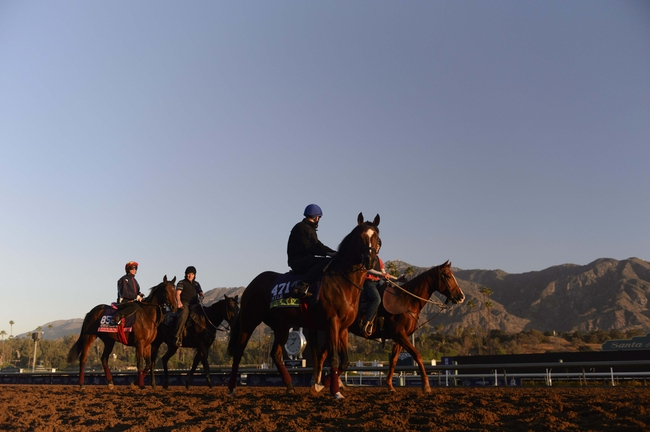 2014 Breeder's Cup Mile Pick, Odds, Post Positions, and Preview