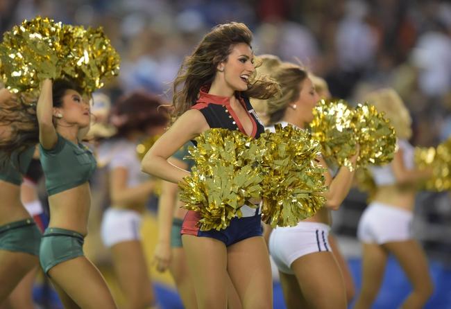 NFL Football Week 10 2015 Picks, Odds, Previews and TV Info: 11/12/15 - 11/16/15